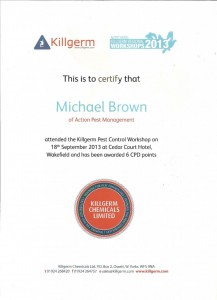 2013-work-shop-cert-744x1024